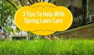 Tips to help with spring lawn care