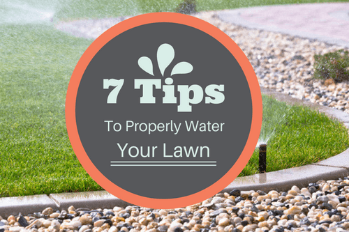 Tips to watering lawn