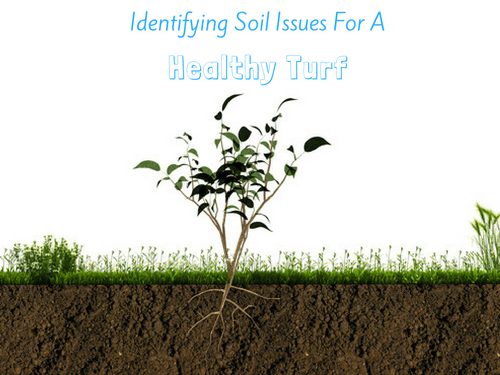 Identifying soil issues
